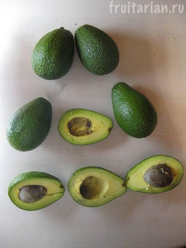 Авокадо — википедия с видео // wiki 2