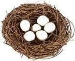 Яйца фазана — полезные свойства и вред | польза и вред