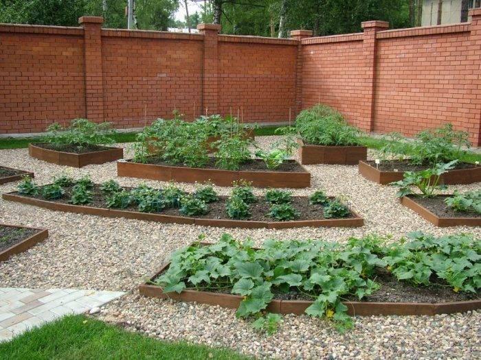 Делаем красивый огород своими руками - советы по выбору планировки и стиля, уникальные фото идеи