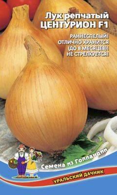 Топ лучших сортов ранней капусты с характеристикой и описанием