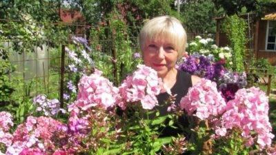 Чем подкормить пионы весной для пышного цветения в саду