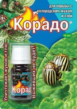 Корадо от колорадского жука: особенность пестицида, использование
