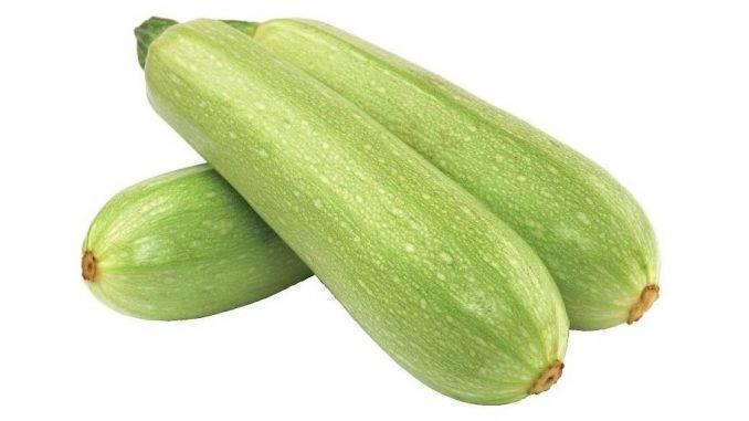 Сорт кабачков «кавили» от голландских селекционеров: чем может вам понравиться и как его правильно вырастить