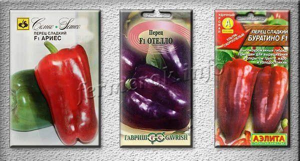 Разнообразные сорта перца для теплицы