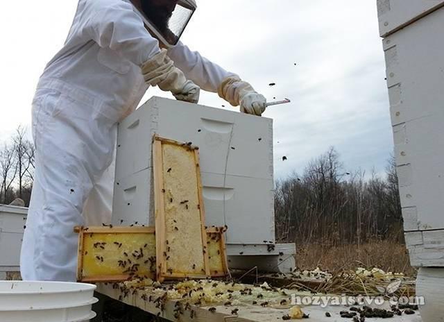 Содержание пчел в ульях лежаках - начинающему пчеловоду