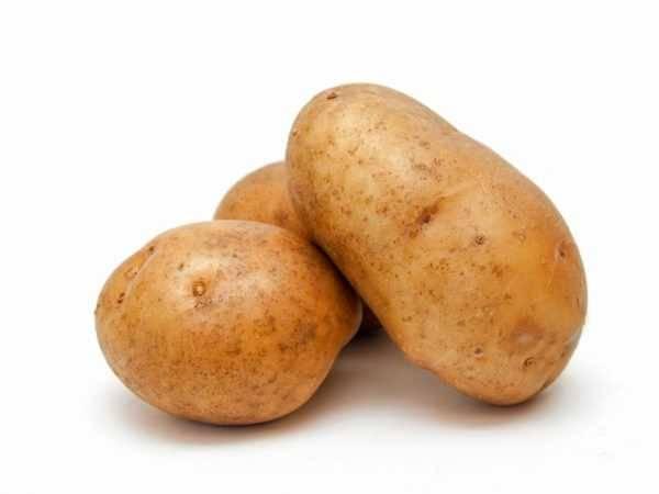 Картофель зорачка описание сорта фото отзывы