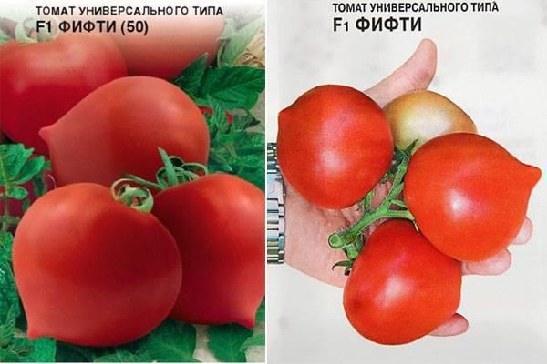 Томат кумир — описание сорта, отзывы, урожайность