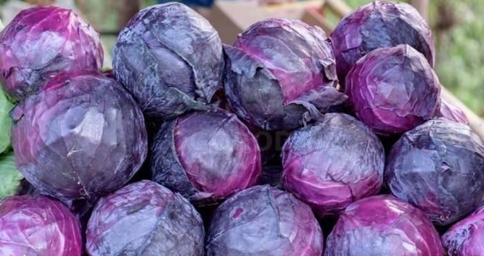 6 полезных свойств краснокочанной капусты для здоровья