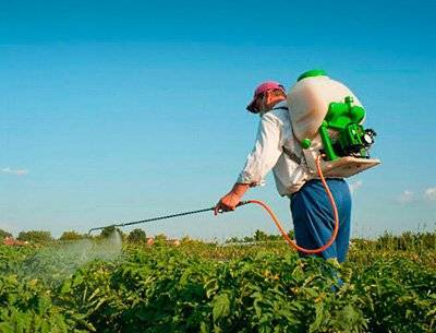 Отрава жукоед от колорадского жука: инструкция по применению, отзывы