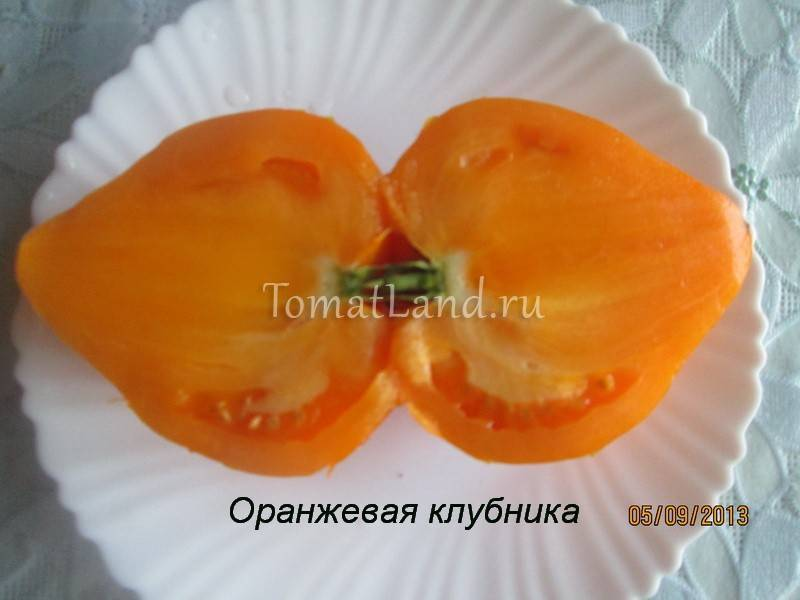 Выращивание томата оранжевая клубника