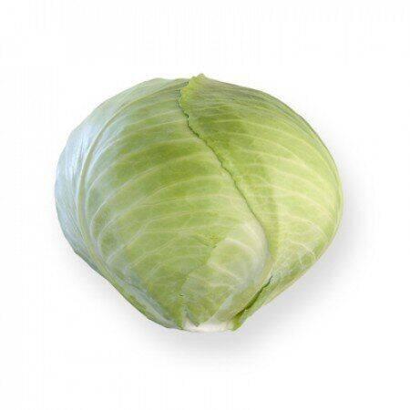 Описание и характеристика сорта капусты ларсия f1