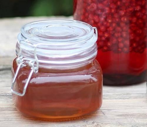 Что делать с ягодами лимонника на зиму. что можно приготовить из ягод китайского лимонника?