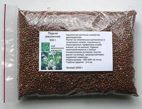 Применение редьки масличной: сидерат, медонос и пища