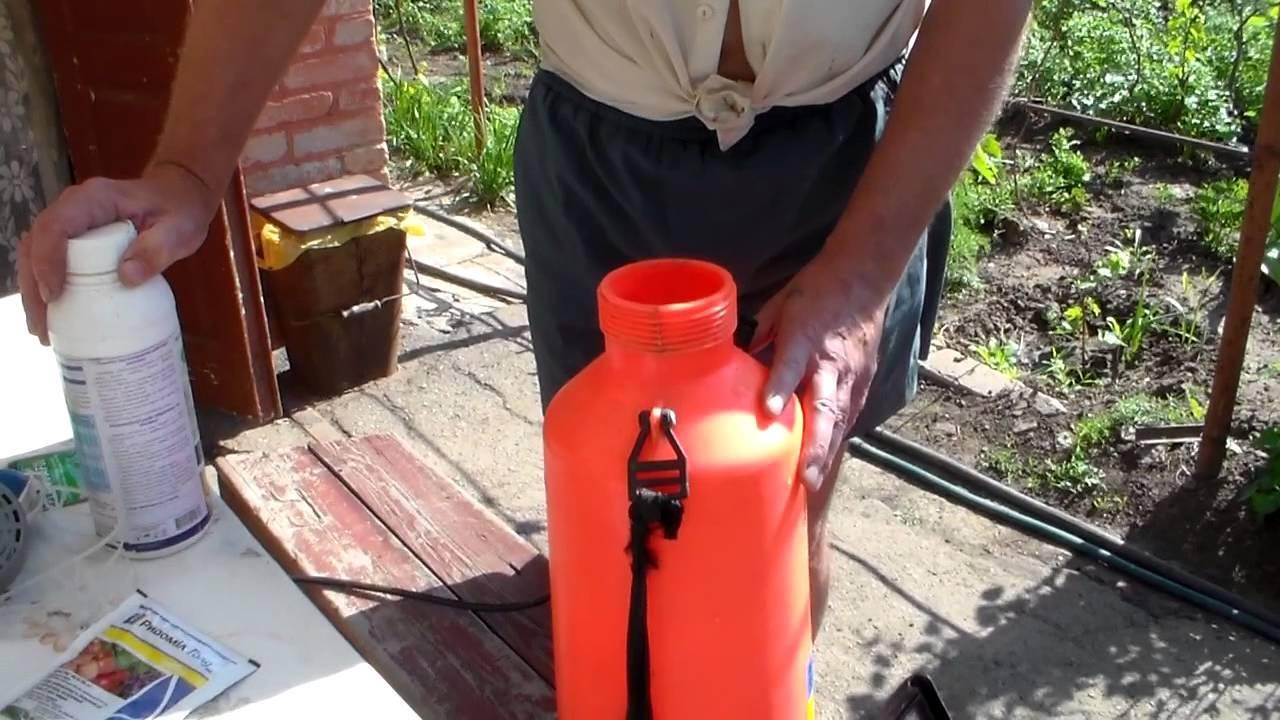 «полирам»: инструкция по применению биологического фунгицида