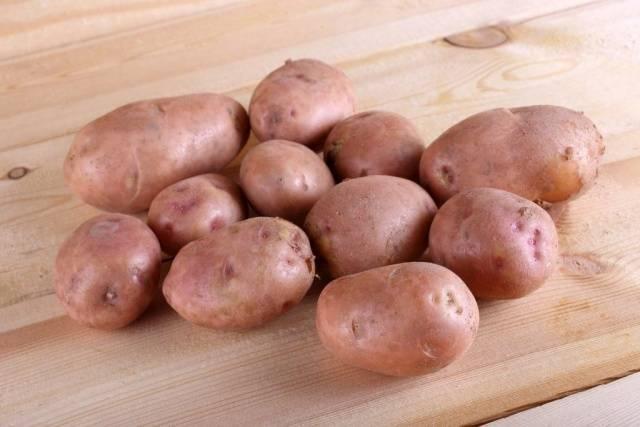 Картофель розалинд
