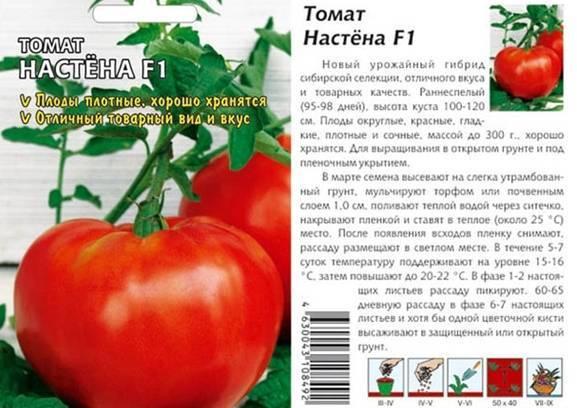 """Томат f1 """"настя сластена"""" : подробное описание сорта помидор с неповторимым сахарным вкусом, его характеристики и фото"""