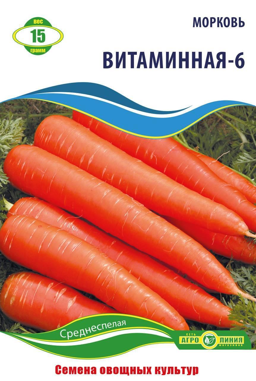 Витаминная 6 морковь. неприхотливый сорт моркови витаминная 6