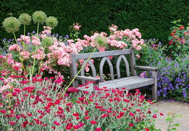 Ландшафтный дизайн с розами на участке или в саду, фото красивых вариантов