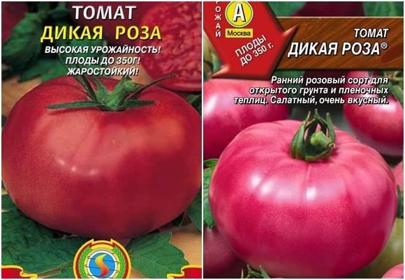 Томат «дикая роза»: описание и характеристика сорта, выращивание и уход