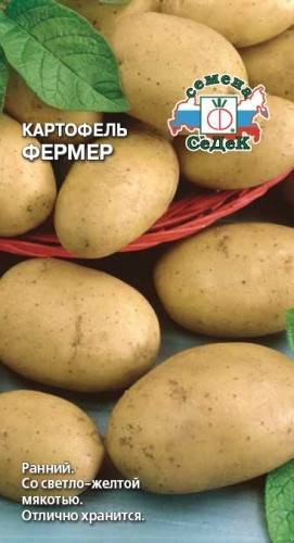 Экзотический сорт с яркими привлекательными клубнями — картофель чудесник: описание и характеристика