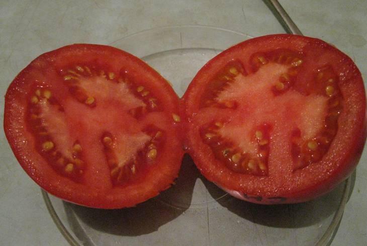 Правила выращивания крупноплодных томатов снежный барс — описание сорта и характеристики, отзывы об урожайности