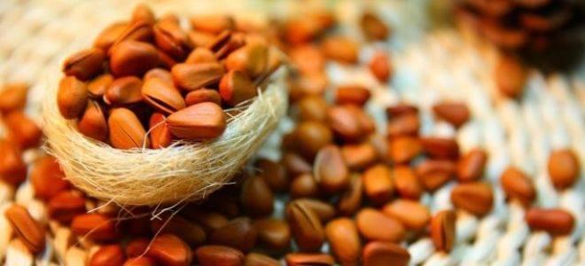Как очистить кедровые орешки от скорлупы и мусора