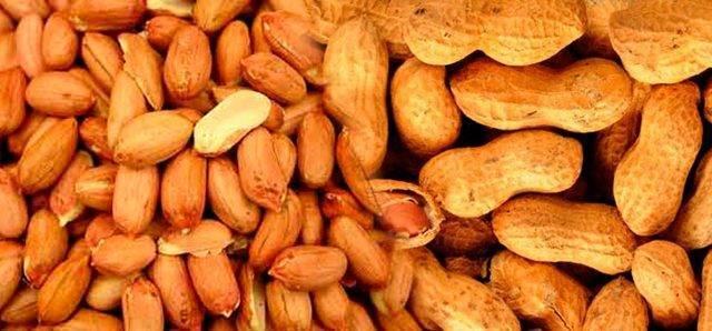 Арахис – польза и вред для организма, эффективность при заболеваниях