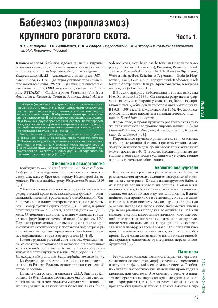 Опасен ли пироплазмоз (бабезиоз) у человека: причины, симптомы и лечение