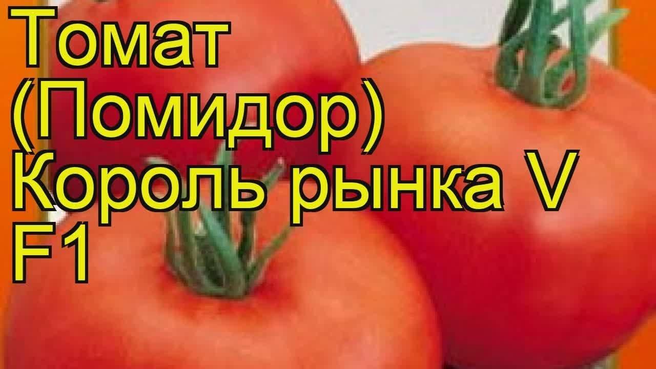 Королева рынка – крупноплодный урожайный томат. характеристики сорта, отзывы садоводов