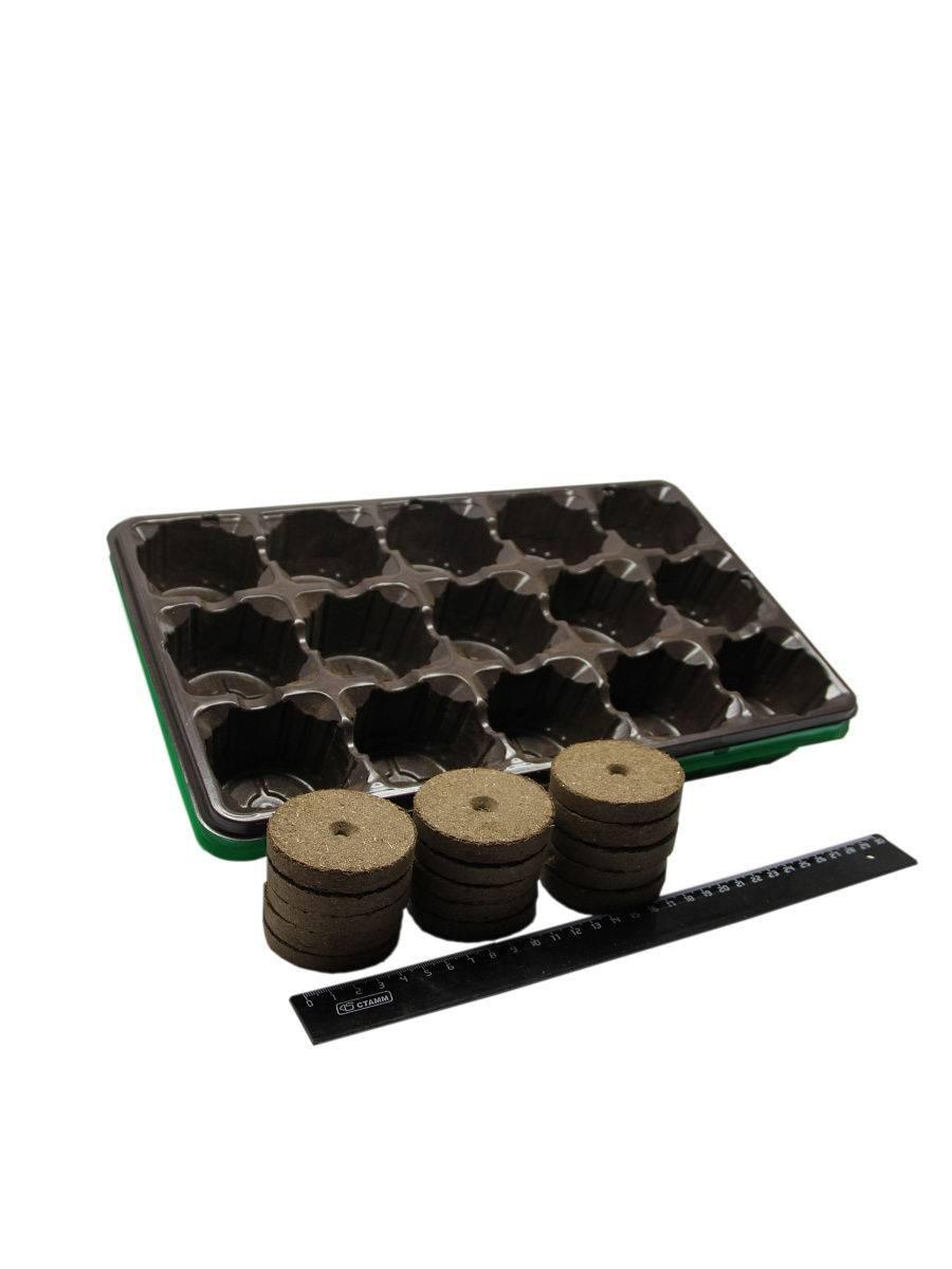Рассада помидор в торфяных горшочках: как сажать и выращивать
