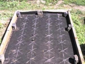 Учимся правильно использовать укрывной материал для клубники против сорняков