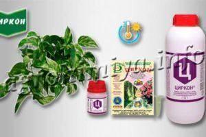 Удобрение циркон для комнатных растений