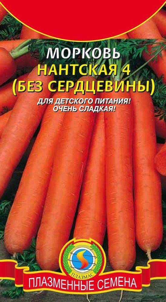 Особенности выращивания и ухода за морковью ред кор
