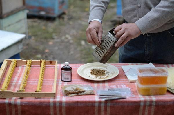 Настойка из водки и прополиса: от чего помогает, приготовление в домашних условиях