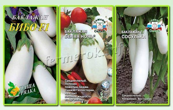 Лучшие сорта баклажанов: для отрытого грунта, теплиц, средней полосы россии, сибири
