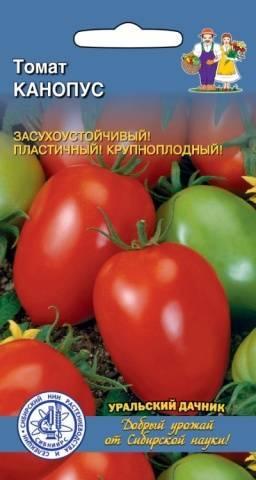 Канопус томат — раскрываем суть