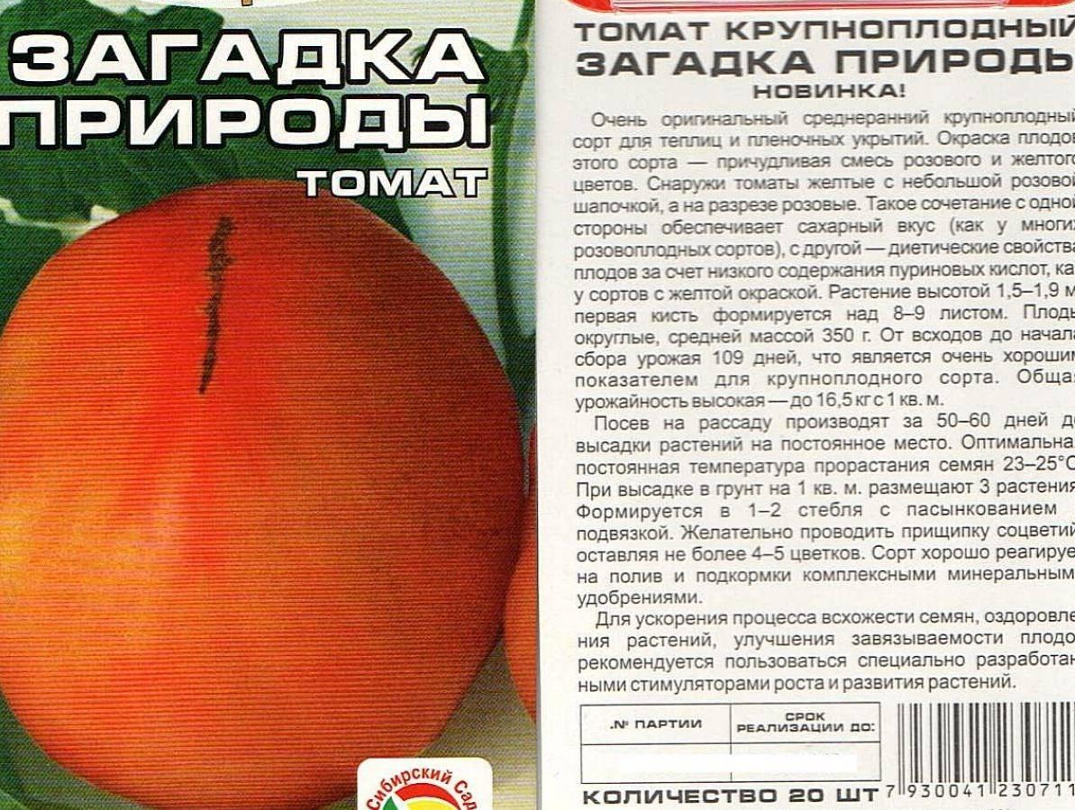 Сорт томата загадка