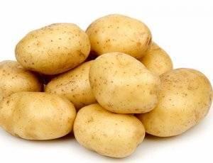 Сорт картофеля невский: описание, характеристики, фото, отзывы